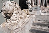 Detail of a marble lion Chiesa San Lorenzo in Genoa Liguria North West Italy