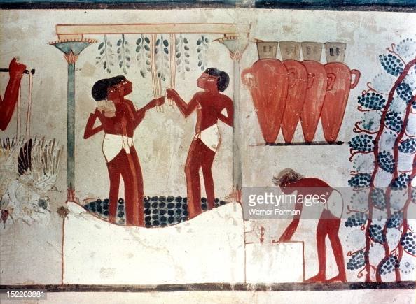A detail of a painting from the tomb of Nakht depicting the treading of the grapes and the storage of the wine in jars Egypt Ancient Egyptian 18th...