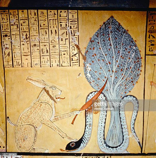 A detail of a painting in the tomb of Inherkha Under a sacred sycomore the sun god Ra in his cat form kills the snake god Apophis god of the...