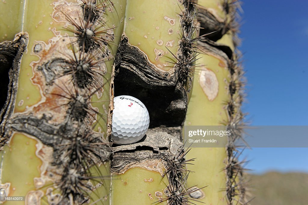 A detail of a Taylormade ball as it rests inside a cactus during the semifinal round of the World Golf Championships - Accenture Match Play at the Golf Club at Dove Mountain on February 24, 2013 in Marana, Arizona.