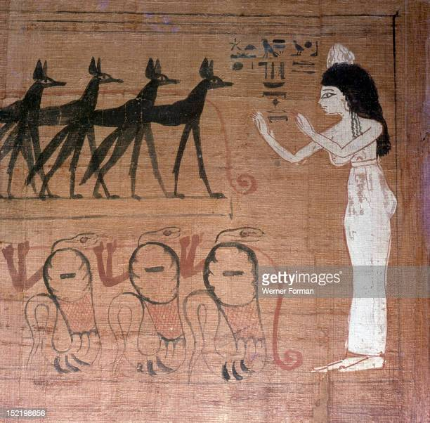 A detail of a vignette from the Book of the Dead of Lady Cheritwebeshet The dead lady prays before the barge of the Sun god which is drawn by jackals...