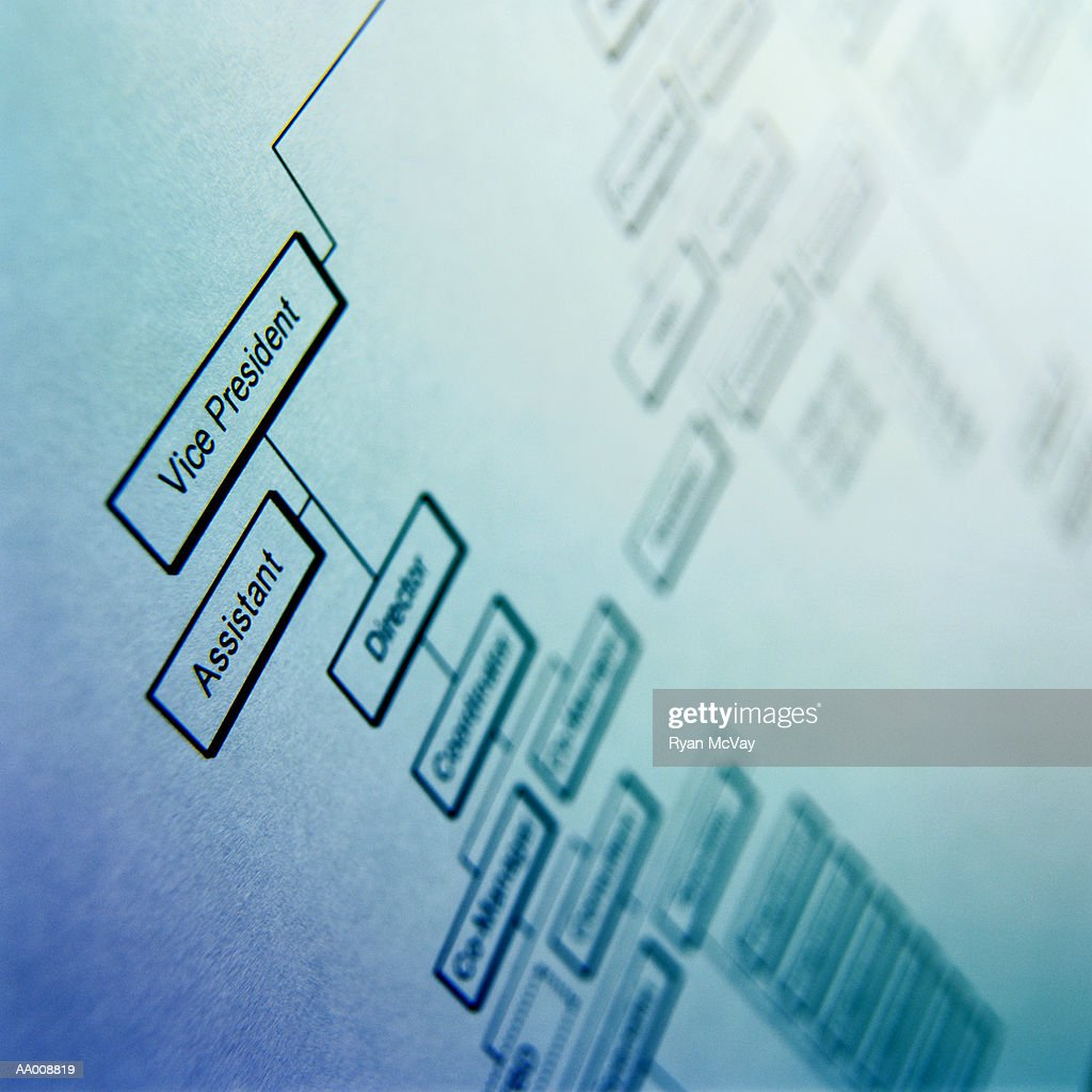 Detail of an Organizational Chart : Stock Photo