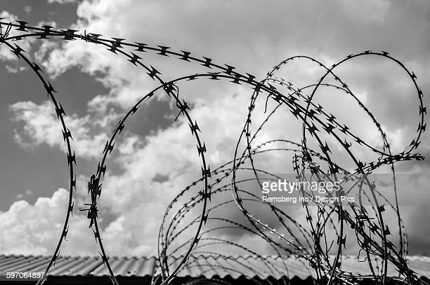 Razor wire stock photos and pictures getty images