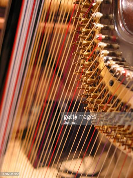 Detail of harp 2