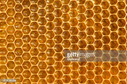 Detail of honeycomb