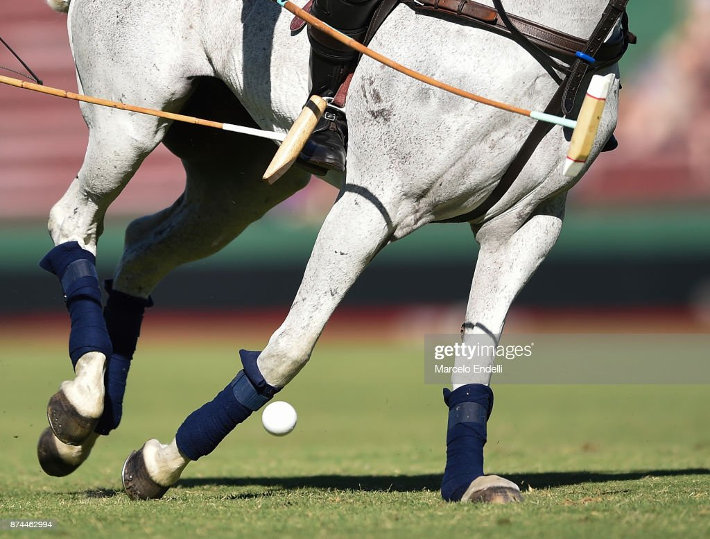Detail of horse running during a match between La Dolfina and La Albertina as part of the HSBC 124°° Argentina Polo Open at Campo Argentino de Polo on November 11, 2017 in Buenos Aires, Argentina.