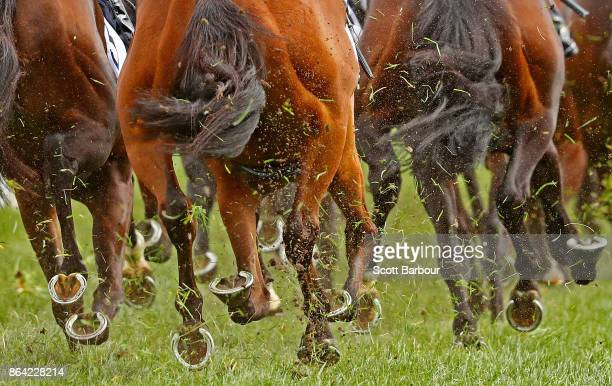 A detail of horse's hooves during race 8 The BMW Caulfield Cup during Caulfield Cup Day at Caulfield Racecourse on October 21 2017 in Melbourne...