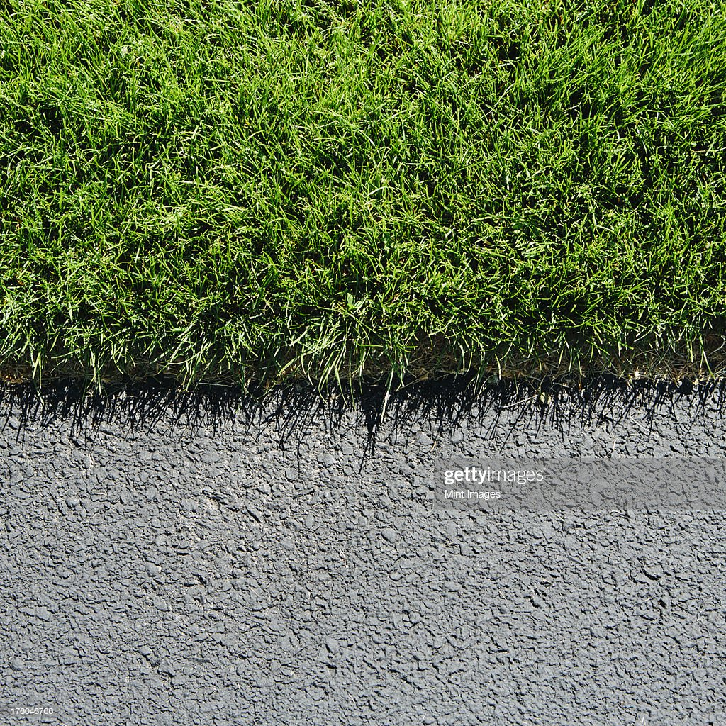 Detail of lush, green grass and sidewalk, near Quincy, USA