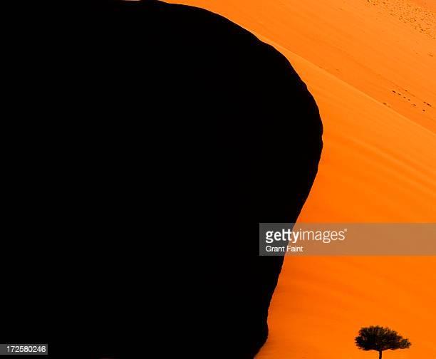 Detail of Namib desert