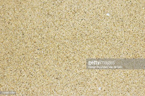 Detail of sand at beach.