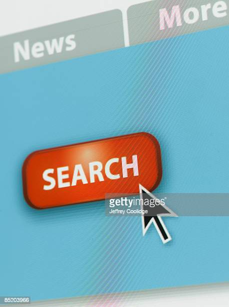 Detail of Search Screen on computer