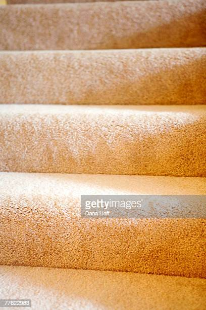 Detail of stairs with yellow carpet