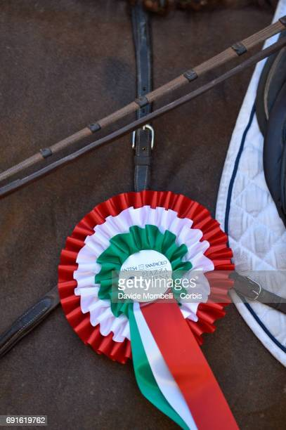 Detail of the cockade during the Piazza di Siena Bank Intesa Sanpaolo in the Villa Borghese on May 27 2017 in Rome Italy