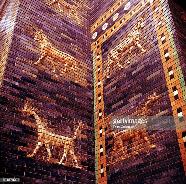 Detail of the Ishtar Gate Babylon c604c562 BC In the collection at the Pergamon Museum in Berlin