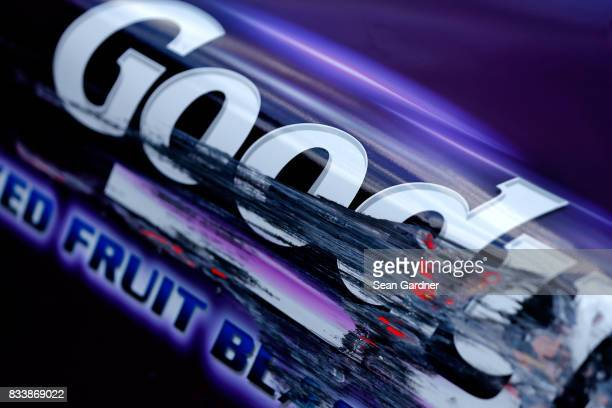 Detail photo of the side of Dale Earnhardt Jr's driver of the Goody's Mixed Fruit Blast Chevrolet car during practice for the NASCAR Xfinity Series...
