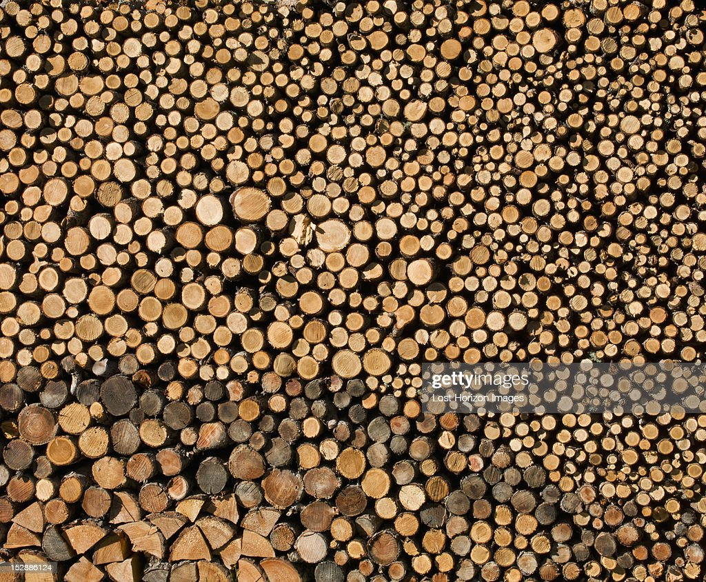 Detail view of stack of logs : Stock Photo