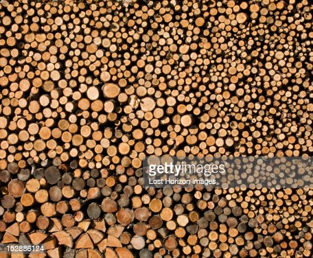Detail view of stack of logs