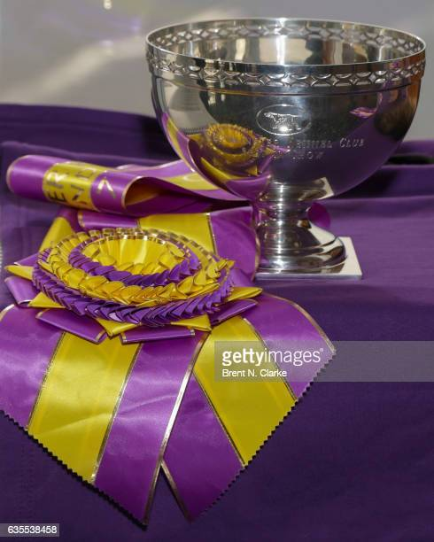 A detail view of the Westminster Kennel Club Dog Show 'Best In Show' Trophy is seen at One World Observatory on February 15 2017 in New York City