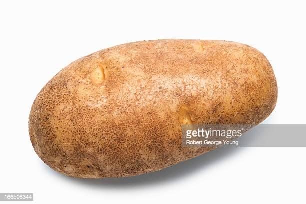 Detailed close-up of an organic potato
