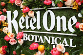 The Launch of Ketel One Botanical