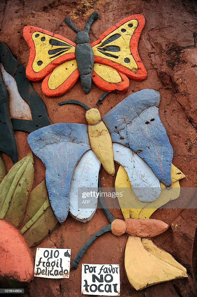 Details of a piece by Colombian artist Carlos Andres Gomez are seen during World Environment Day in Cali, Valle del Cauca departament, Colombia on June 5, 2010. Gomez sculpts figures on the mountain to raise awareness of the importance of the environment. AFP PHOTO/Luis ROBAYO