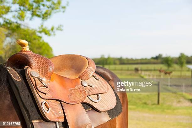 Details of horse saddle