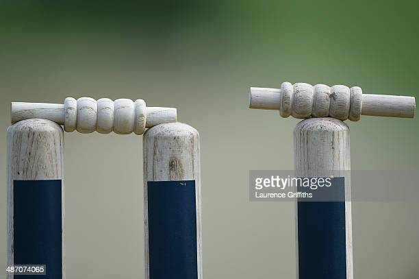 Details of the stumps during day one of the LV County Championship division one match between Nottinghamshire and Warwickshire at Trent Bridge on...