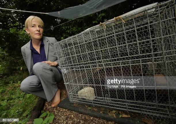 Detective Chief Inspector Jacqueline Sebire poses next an to experiment where a pigs head is placed inside a zippedup suitcase to attract flies to...