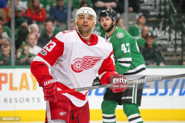 Detroit Red Wings Defenceman Trevor Daley watches a puck fly out of play during the NHL game between the Detroit Red Wings and Dallas Stars on...