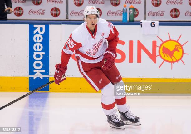 Detroit Red Wings defenseman Danny DeKeyser skates during the warm up before a game against the Toronto Maple Leafs at Air Canada Centre in Toronto...