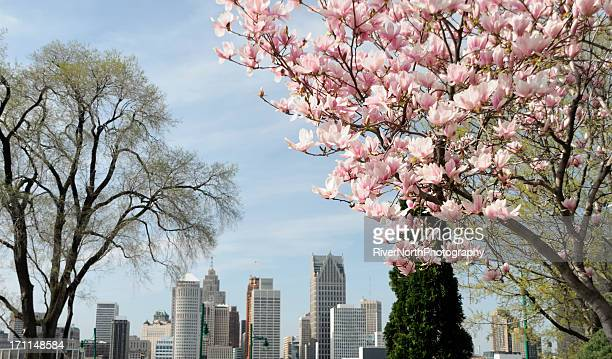 Detroit Skyline in Spring