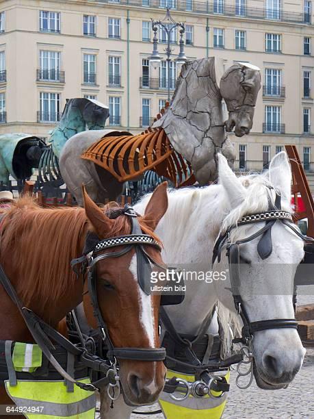 Deutschland Berlin 06052105 Pferde Projekt des mexikanischen Künstlers Gustavo Aceves zum 70 Jahrestag der Befreiung Lapidarium Grenzen überwinden...