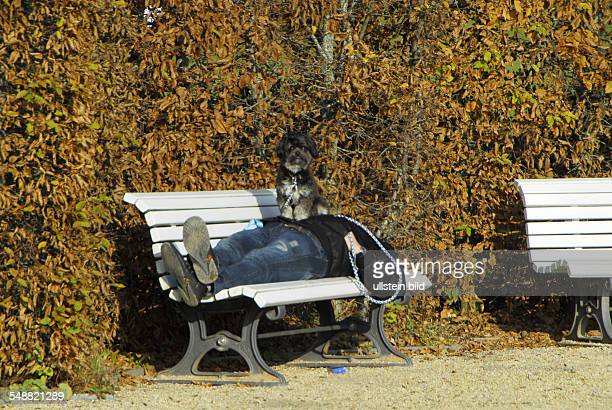 Deutschland Mann liegt auf einer Parkbank Hund sitzt auf seinem Bauch