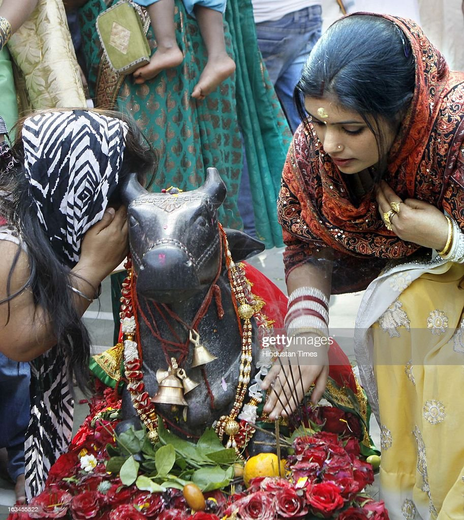 Devotees offering prayer to Nandi on occasion of Shivratri Festival on March 10, 2013 in New Delhi, India. Literally meaning great night of Shiva or the night of Shiva, Maha Shivaratri is celebrated every year on the 13th night/14th day of the Maagha or Phalguna month of the Hindu calendar. According to Hindu legends this is day of Samundra Manthan as well as day of Marriage of Lord Shiva to Devi Parvati.