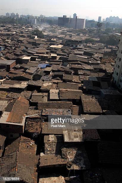Dharavi roof