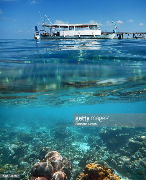 Dhoni and Maldivian Coral Reef
