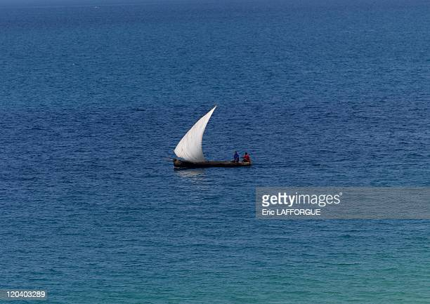 Dhow in Zanzibar Tanzania on February 11 2009 Special restriction Image not available in Bulgaria Ukraine Kazakhstan and Russia Territories from...
