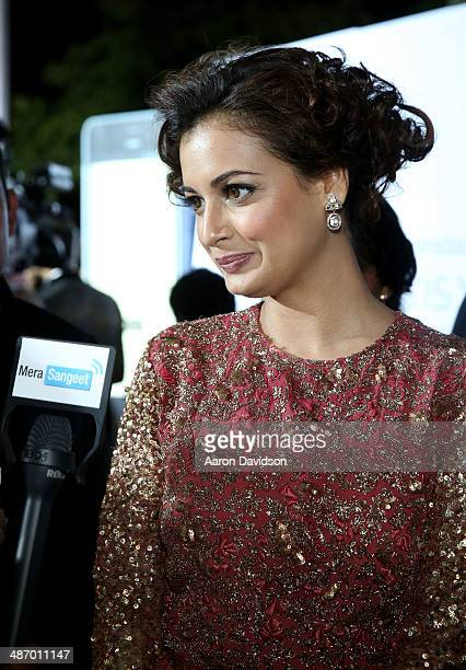 Dia Mirza arrives to the IIFA Awards at Raymond James Stadium on April 26 2014 in Tampa Florida