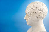 Diagram of human head