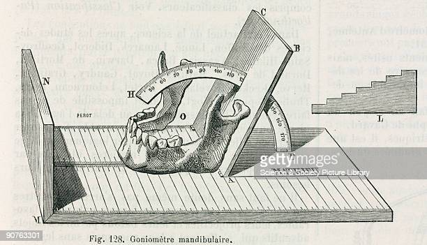 Diagram showing measurement of the jaw using a goniometer Illustration from �Dictionnaire des sciences anthropologiques� an anthropological...