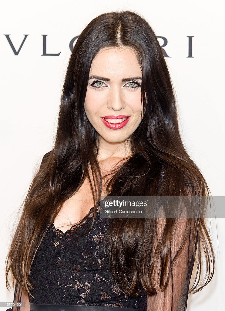 Diana Lado attends the 2014 amfAR New York Gala at Cipriani Wall Street on February 5, 2014 in New York City.