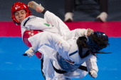 Diana Lara of Mexico competes with Telisca Reis of Brazil during a women's 53 kg combat of WTF World Taekwondo Championships 2013 at the exhibitions...