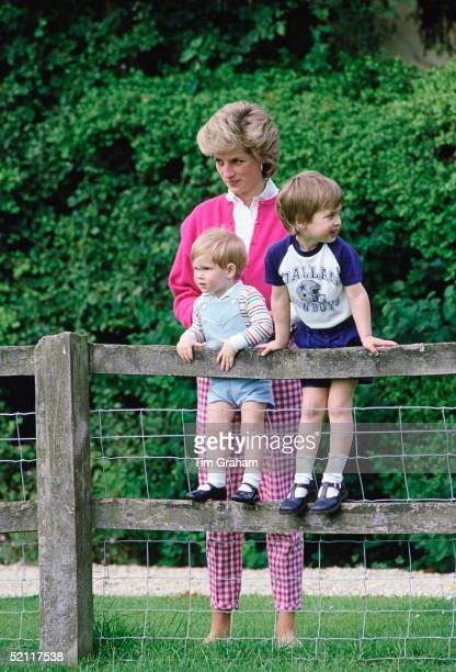 Diana Princess Of Wales With Her Sons William And Harry In The Grounds Of Highgrove In Tetbry Gloucestershire