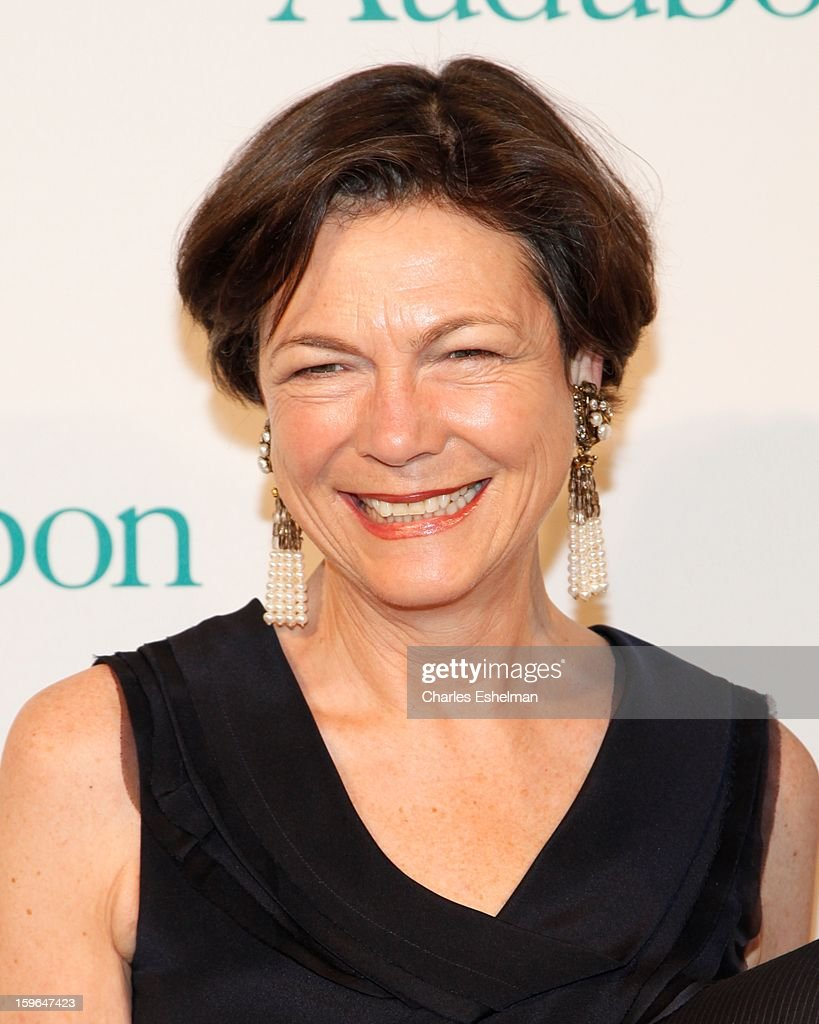 Diana Taylor attends the 2013 National Audubon Society Gala dinner on January 17, 2013 at The Plaza Hotel in New York, City.
