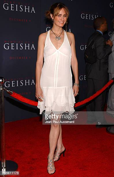 Diane Farr during 'Memoirs of a Geisha' Los Angeles Premiere Arrivals at Kodak Theatre in Hollywood California United States