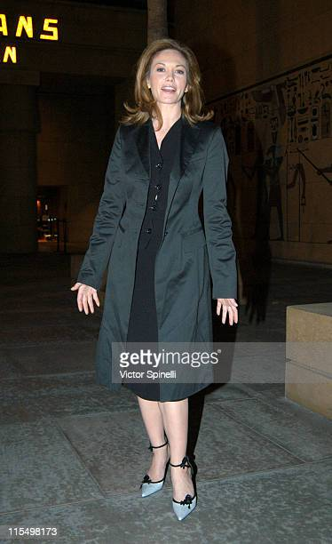 Diane Lane during Diane Lane Photo Opportunity at Egyptian Theater in Hollywood California United States