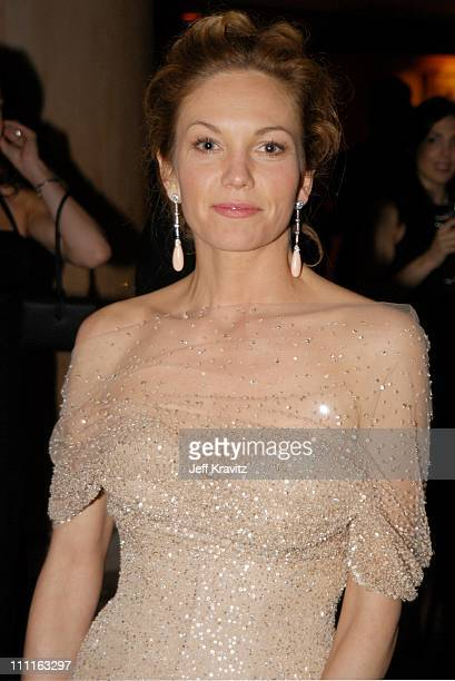 Diane Lane during Miramax Oscar Party at St Regis Hotel in Hollywood CA United States