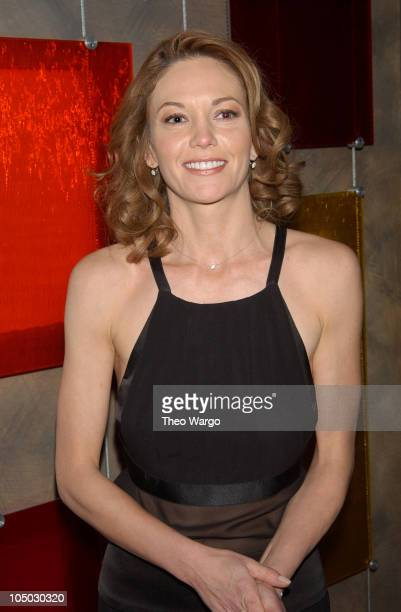 Diane Lane during The 2002 New York Film Critics Circle 68th Annual Awards Dinner Inside at Noche Restaurant in New York City New York United States