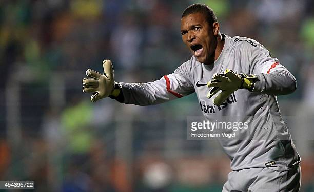 Dida of Internacional gives advise during the match between Palmeiras and Internacional for the Brazilian Series A 2014 at Estadio do Pacaembu on...