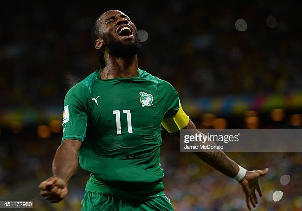 Didier Drogba of the Ivory Coast celebrates his team's first goal during the 2014 FIFA World Cup Brazil Group C match between Greece and the Ivory...
